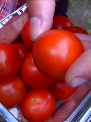 Emo boy ass tasting tomatoes - Gay boys pics at Twinkest.com