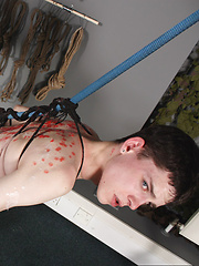 Plaything Aaron Aurora! - Gay boys pics at Twinkest.com