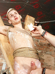 Big-Dicked Bound Boy Reece - Gay boys pics at Twinkest.com