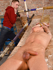 Stretched And Stroked - E-Stim! - Gay boys pics at Twinkest.com